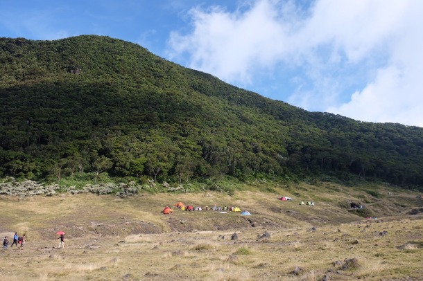 Gunung Gede Suryakencana camping