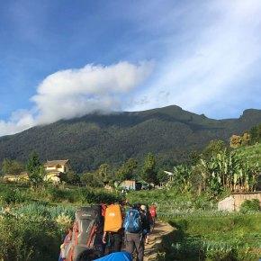 5 Alasan Kenapa Kamu akan Suka Jalur Gunung Putri ke GunungGede